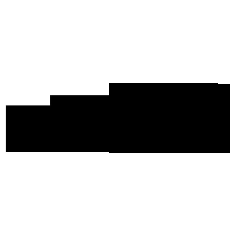 BioNike Logo